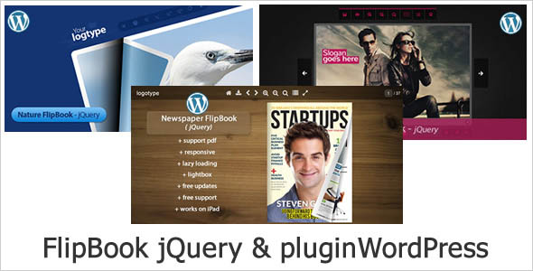 Bundle FlipBook WordPress Plugin